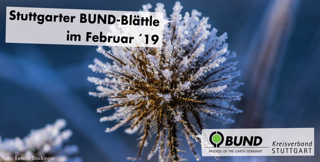 Stuttgarter BUND-Blättle Februar 2019 - BUND KV Stuttgart