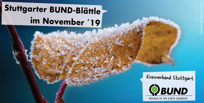 Stuttgarter BUND-Blättle November 2019 - BUND KV Stuttgart